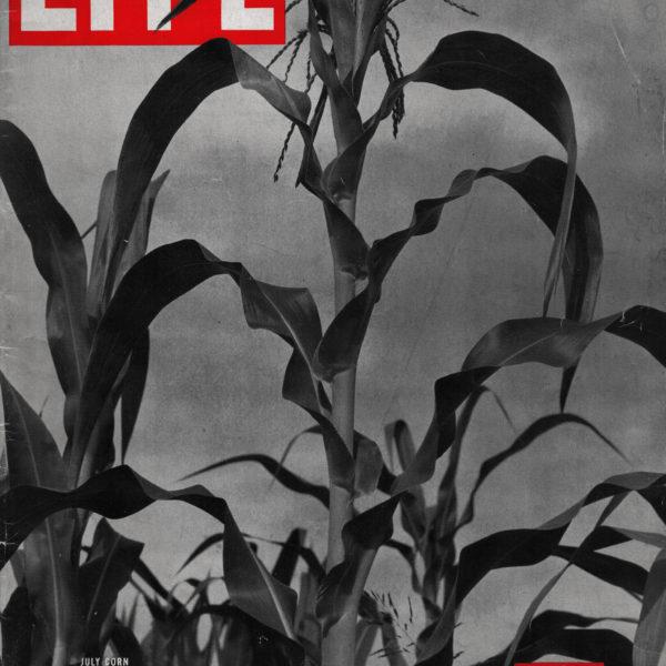 Magazín LIFE (1937)